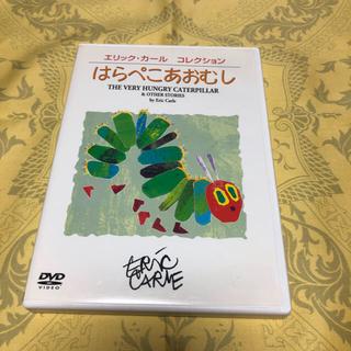 エリックカール コレクション はらぺこあおむし  DVD