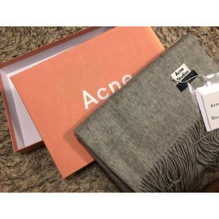 ACNE - 【新品未使用】アクネストゥディオズ マフラー/ライトグレー