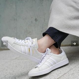 IENA - IENA adidas / アディダス 別注 CAMPUS◆24㎝