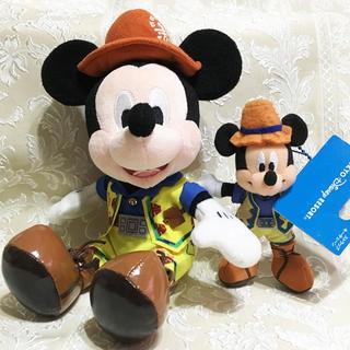 Disney - 激レア★配送事故補償付★新品未使用★トレイルミッキーぬいぐるみとストラップ