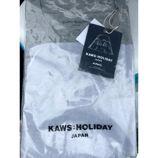 ディオール(Dior)のkaws holiday 日本限定 Tシャツ L(Tシャツ/カットソー(半袖/袖なし))