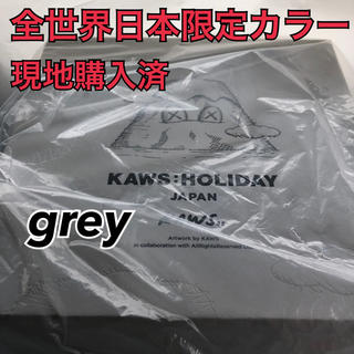 MEDICOM TOY - 1個 KAWS HOLIDAY Grey 限定 plush japan 日本