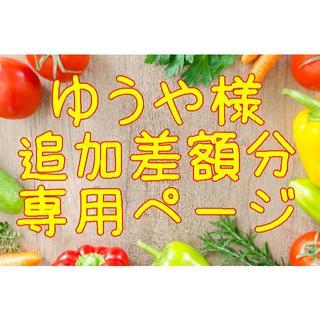 ★ゆうや様メロン追加分差額 購入専用ページ(野菜)