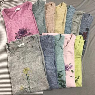 FELISSIMO - FELISSIMO★sunny clouds 花めぐりTシャツ 全12枚セット