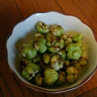 またたび 虫エイ 2キロ(野菜)
