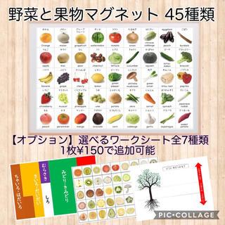 野菜と果物 マグネット 知育