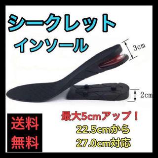 【売れ筋】シークレットインソール 美脚 5㎝アップ 身長アップ 足長効果(その他)