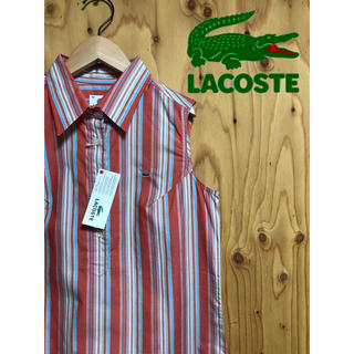 LACOSTE - 新品 未使用 タグ付き ラコステ レディース シャツ