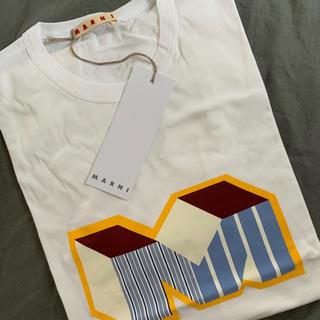 マルニ(Marni)のマルニ 今期デザインTシャツ(Tシャツ(半袖/袖なし))