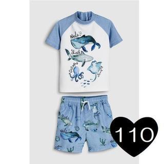 NEXT - *110*海の生き物 スイムスーツ 水着