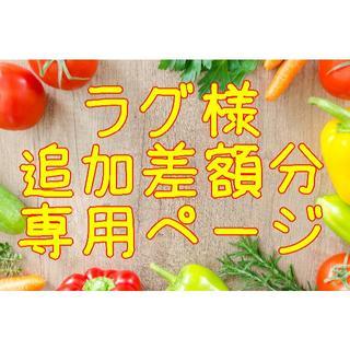 ★ラグ様 追加購入差額お支払い 専用ページ(野菜)