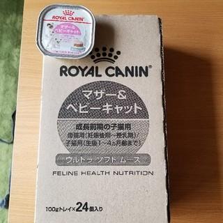 ROYAL CANIN - ロイヤルカナンマザー&ベビーキャット