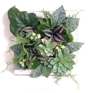 緑がいっぱい!グリーンと多肉植物の壁掛け