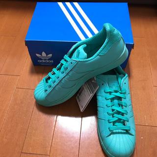 adidas - adidas♡スーパースター