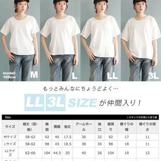新品未開封Tシャツ半袖(Tシャツ(半袖/袖なし))