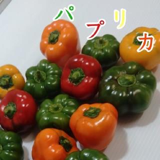 フルーツパプリカ(野菜)