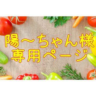 ★陽~ちゃん(予約分プロフィール記入) 様専用ページ(野菜)