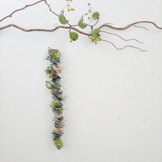 ユーカリと夏の花の縦型(ドライフラワー)