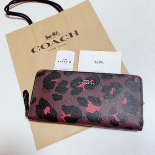 COACH - 新品 最新モデル COACH 長財布 人気 ヒョウ柄 レザー
