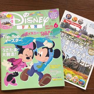 Disney - ディズニーファン 6月号