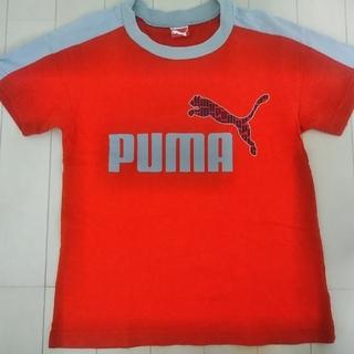 130 男の子 プーマTシャツ