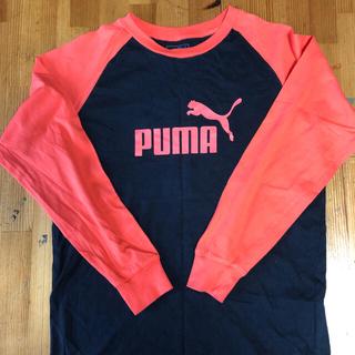 PUMA  boys  ラグランシャツ