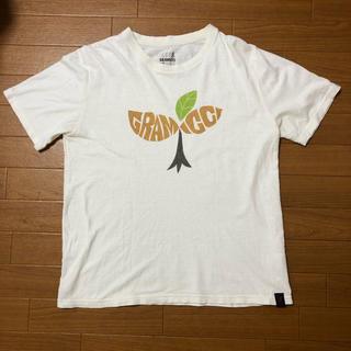 グラミチ(GRAMICCI)のグラミチ tシャツ(Tシャツ/カットソー(半袖/袖なし))