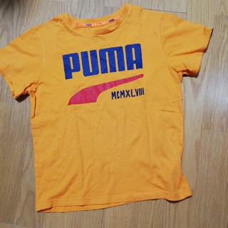 PUMA ☆ Tシャツ 140