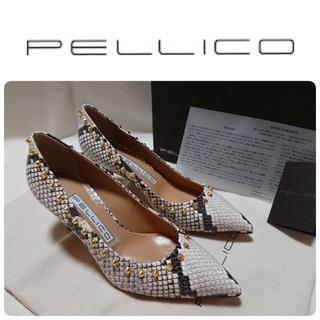 PELLICO - 19SS希少 ペリーコ アンドレア スタッズ パイソン パンプス 定価61560