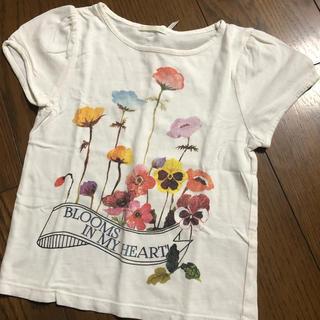 GU - ポピーTシャツ