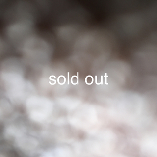 adidas by Stella McCartney - sold out