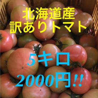 北海道産 訳あり トマト 5キロ