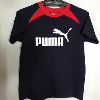 プーマジュニアTシャツ  150サイズ