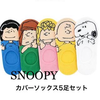 スヌーピー(SNOOPY)の【SNOOPY】レディース/カバーソックス/5足セット(ソックス)