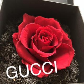 グッチ(Gucci)のGUCCI ドライフラワー 箱 花 インテリア(ドライフラワー)