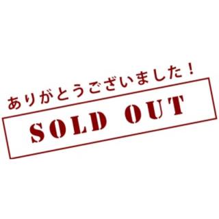 NIKE - 新品ダイナモフリー 新色☆  16cm