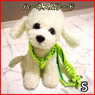 ハーネス リード 首輪♡ 犬 猫 ペット クシュクシュドット グリーン:S