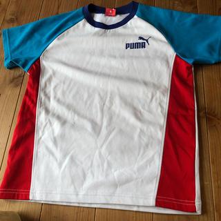 PUMAプラクティスTシャツ白☆140cm