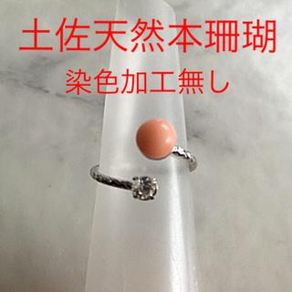 土佐天然本珊瑚・リング(リング(指輪))