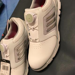 アディダス(adidas)のadidasゴルフシューズレディース(シューズ)