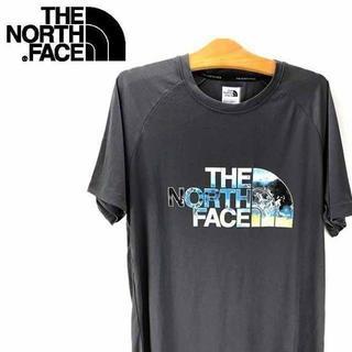 THE NORTH FACE - ノースフェイス ロゴ Tシャツ THE NORTH FACE メンズ グレー L