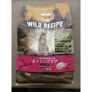 ニュートロ ワイルドレシピ キャットフード エイジングケア シニア猫用 チキン