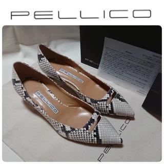 PELLICO - 19SS新品 ペリーコ アンドレア アネッリ パイソン 36 定価55,080円
