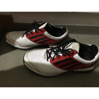 adidas - アディダス ゴルフシューズ adidas