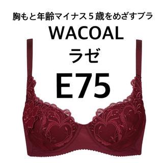 Wacoal - 新品 ワコール E75 ラゼ マイナス5歳 ワインカラー
