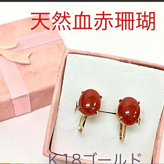 天然血赤珊瑚K18 ゴールドイヤリング(イヤリング)