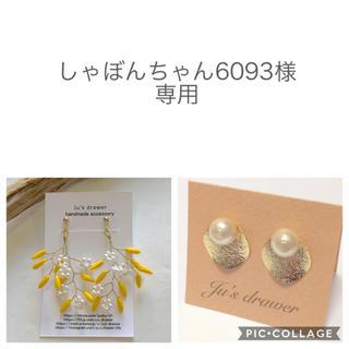 しゃぼんちゃん6093様 専用ページ(ピアス)