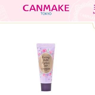CANMAKE - キャンメイク ラスティングマルチアイベース WP01
