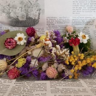 ドライフラワー 花材セット 2(ドライフラワー)