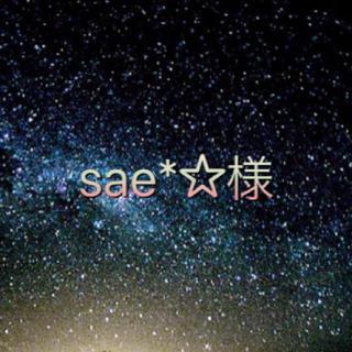 トイストーリー(トイ・ストーリー)の☆sae*☆様専用☆(SF/ファンタジー/ホラー)